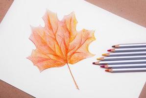 folha de árvore de bordo vermelho detalhado foto