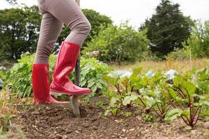 mulher vestindo jeans e botas de borracha vermelha em seu jardim