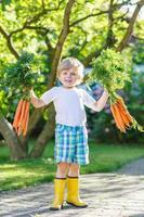 menino criança feliz com cenouras no jardim doméstico foto