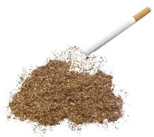 cigarro e tabaco em forma de butão (série) foto