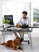 empresário, trabalhando no local de trabalho que aceita animais de estimação