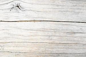 textura de tronco de madeira padrão foto
