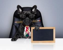 cão de chefe de trabalhador de escritório foto