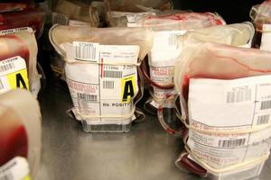 banco de sangue foto