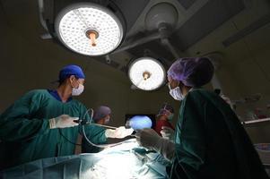 grupo de médico veterinário na sala de operação para cirurgia laparoscópica foto