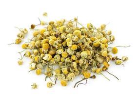 ervas medicinais de camomila foto