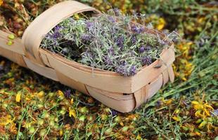 chá de ervas medicinais