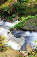 pequena cachoeira na selva