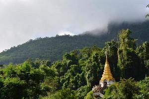 templo na selva foto