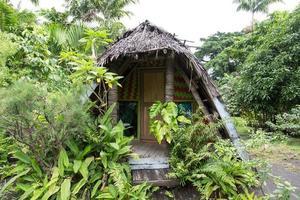 bangalô na selva