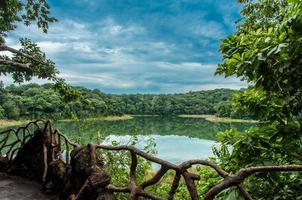 lago na selva foto