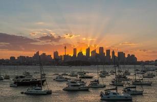 pôr do sol sydney cidade cbd foto