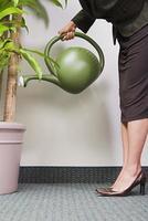 planta molhando de empresária foto