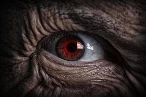 olho do mal