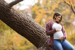 jovem mulher grávida no parque outono foto