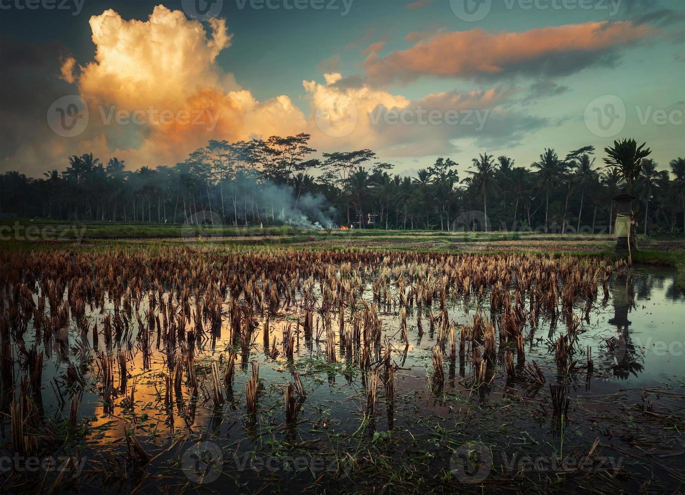 Indonesien foto