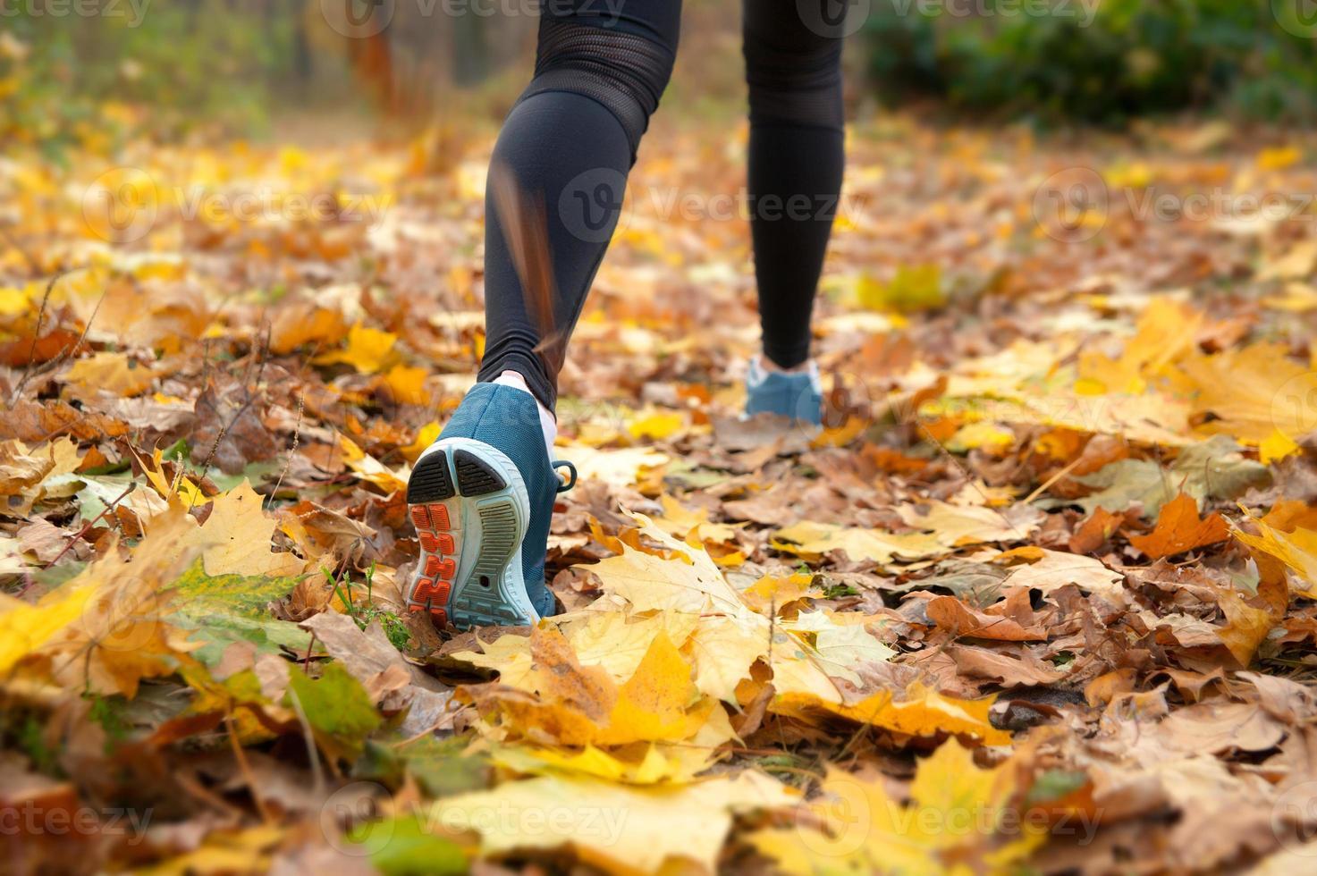 Morgenlauf im Wald foto
