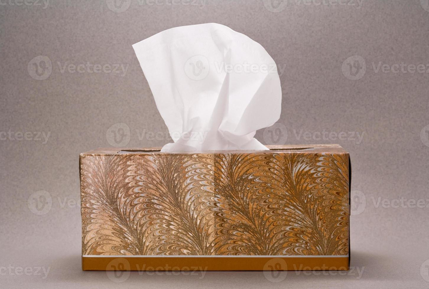 Schachtel Taschentuch foto