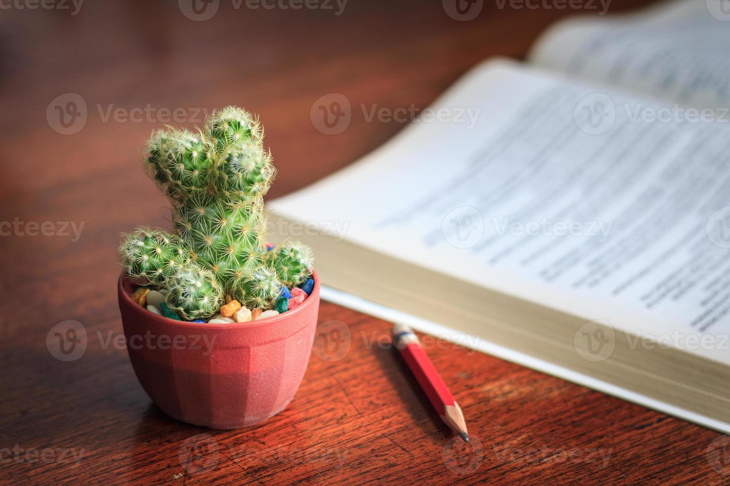 Geschäftskonzept des Kaktusstifts und eines Buches foto