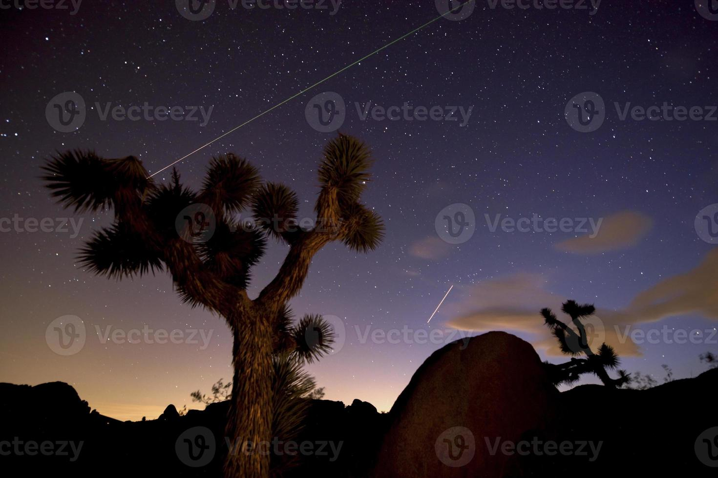 Nacht im Joshua Tree National Park foto