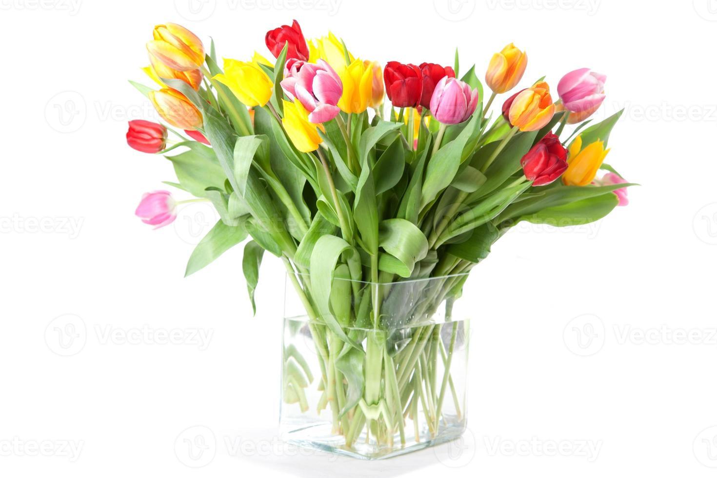 lebhafte farbige Tulpen foto