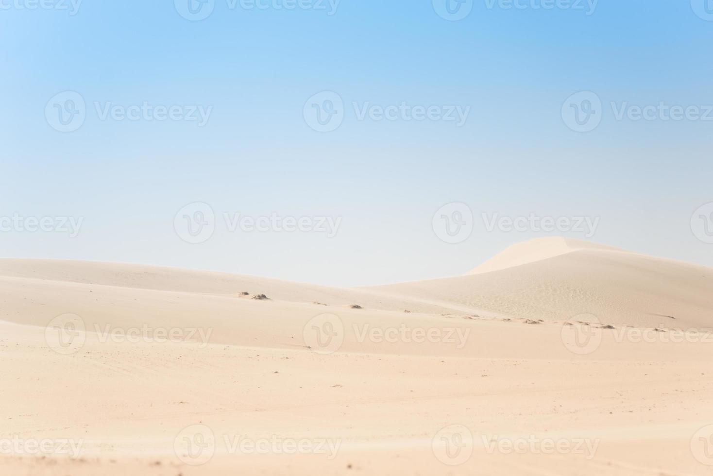 Wüste foto