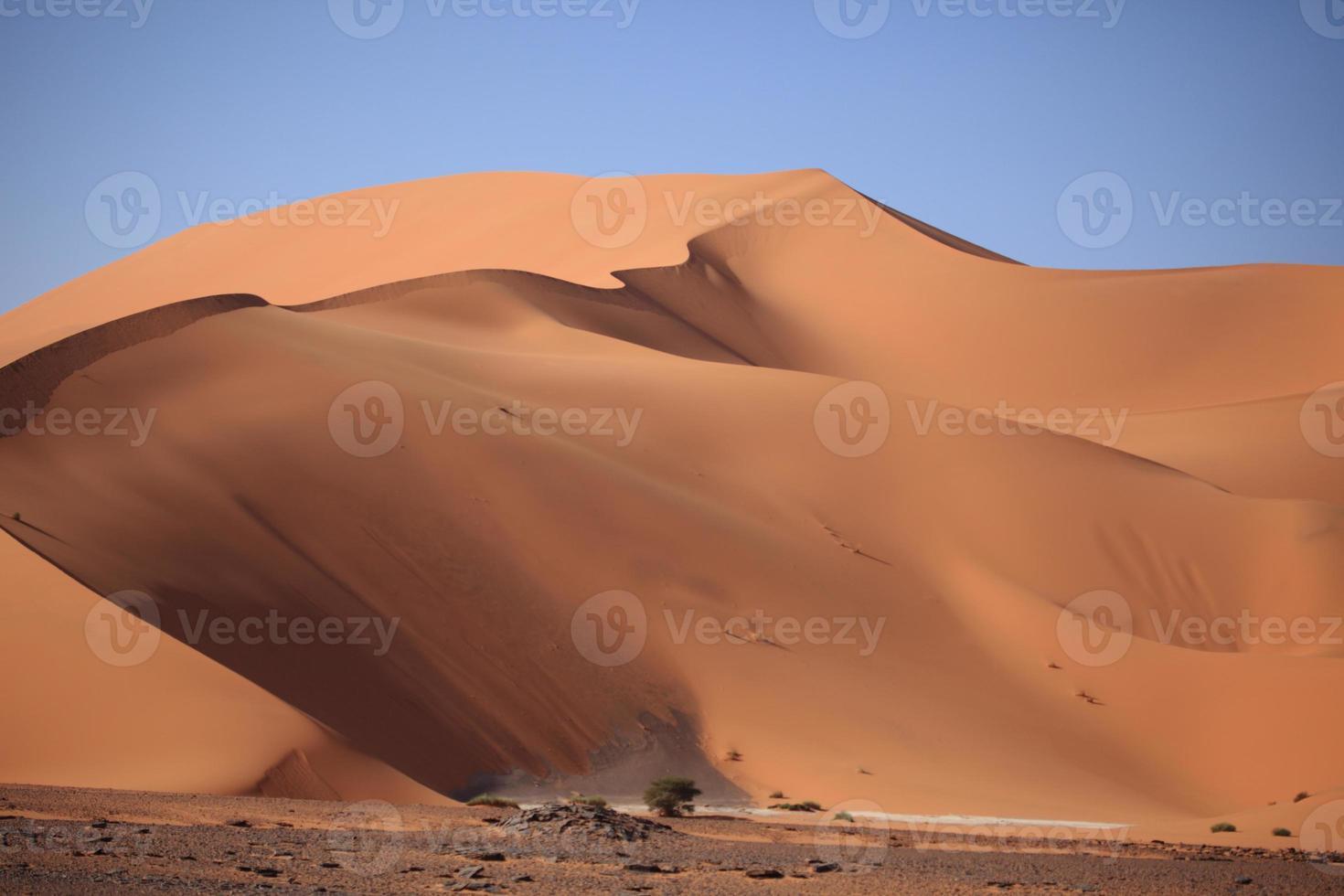 die wüste sahara in algerien foto