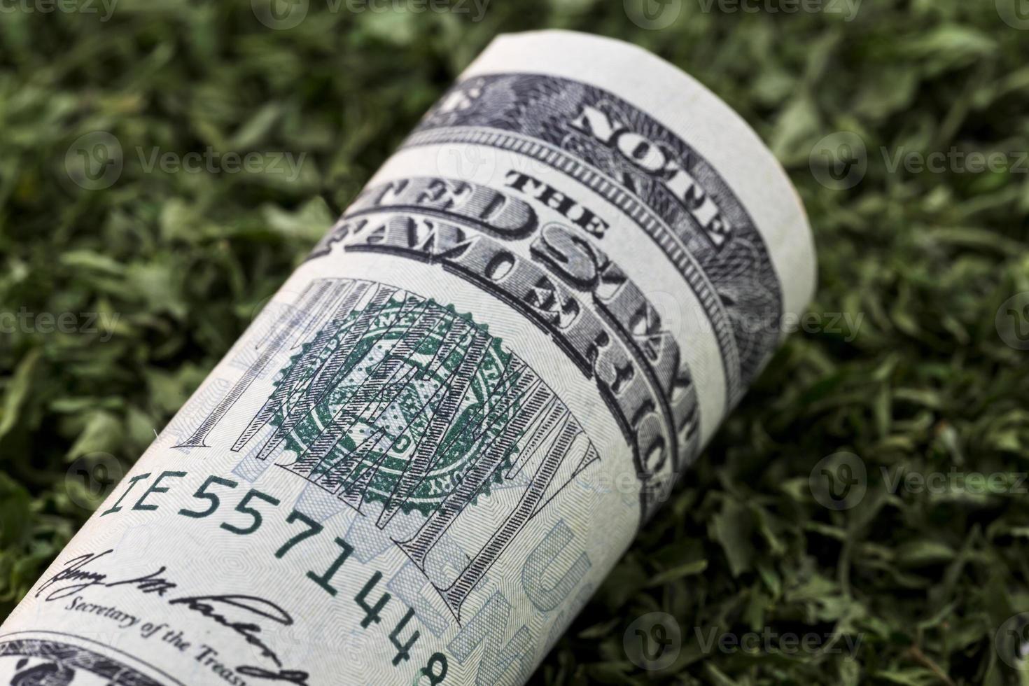 amerikanische Währung auf grünem Gewürz foto