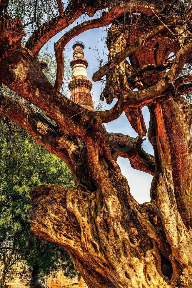 Qutub Minar Tower, Delhi Indien foto
