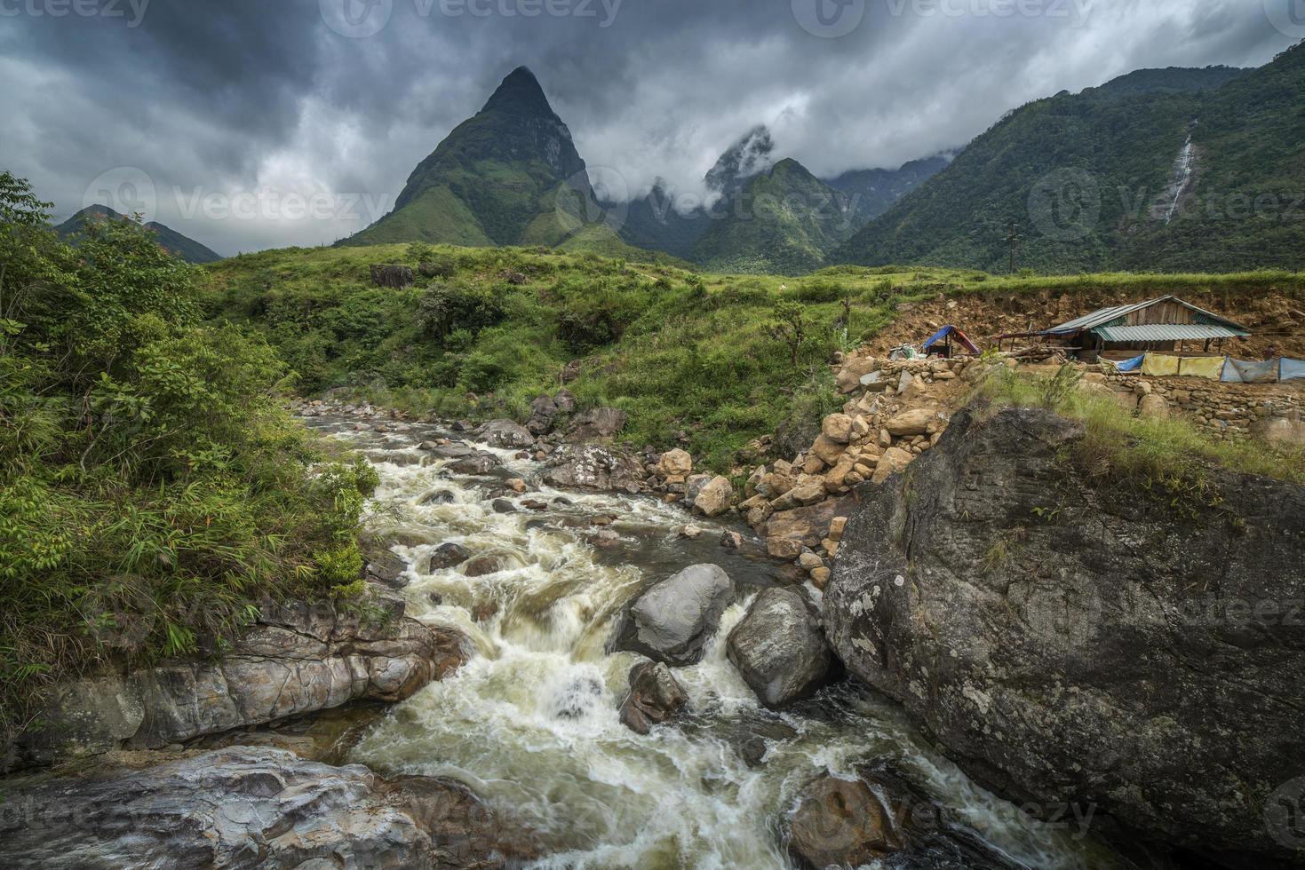 Reisfarm in Vietnam foto