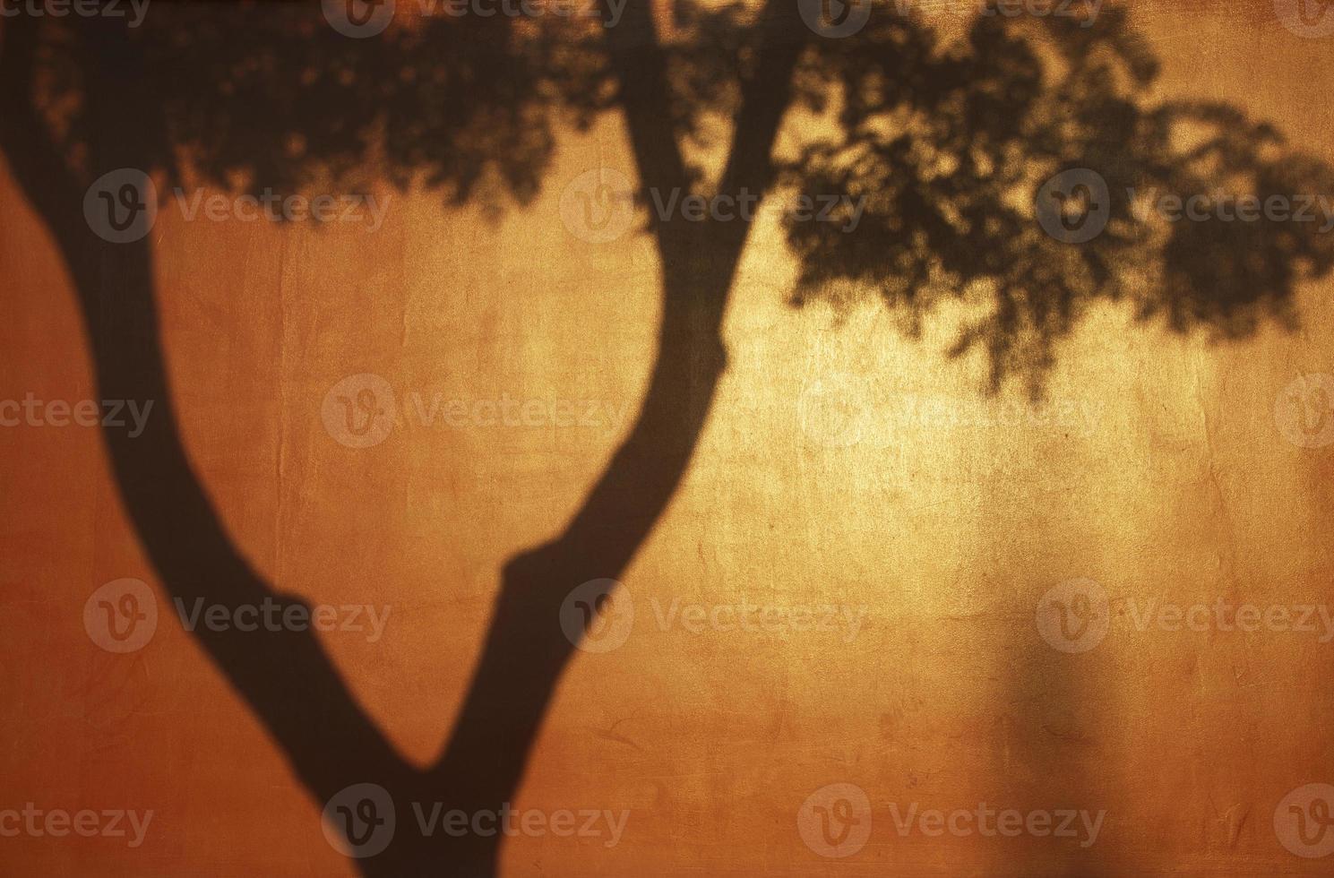 Schatten auf der roten verbotenen Stadtmauer, Peking foto