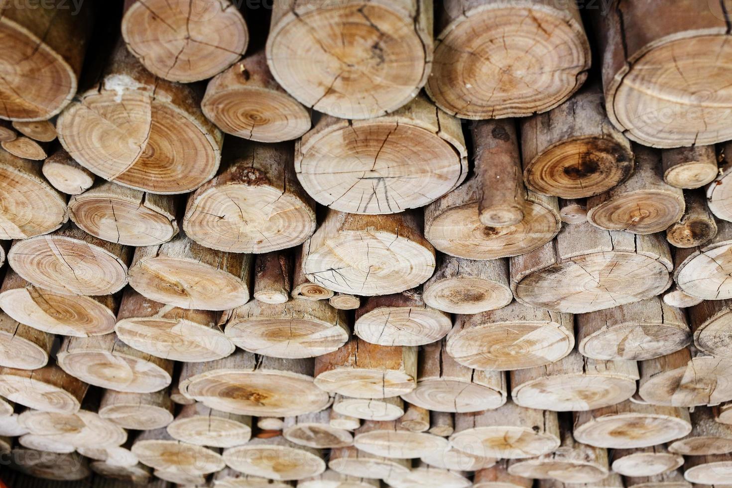 Holzstämme für die Industrie foto