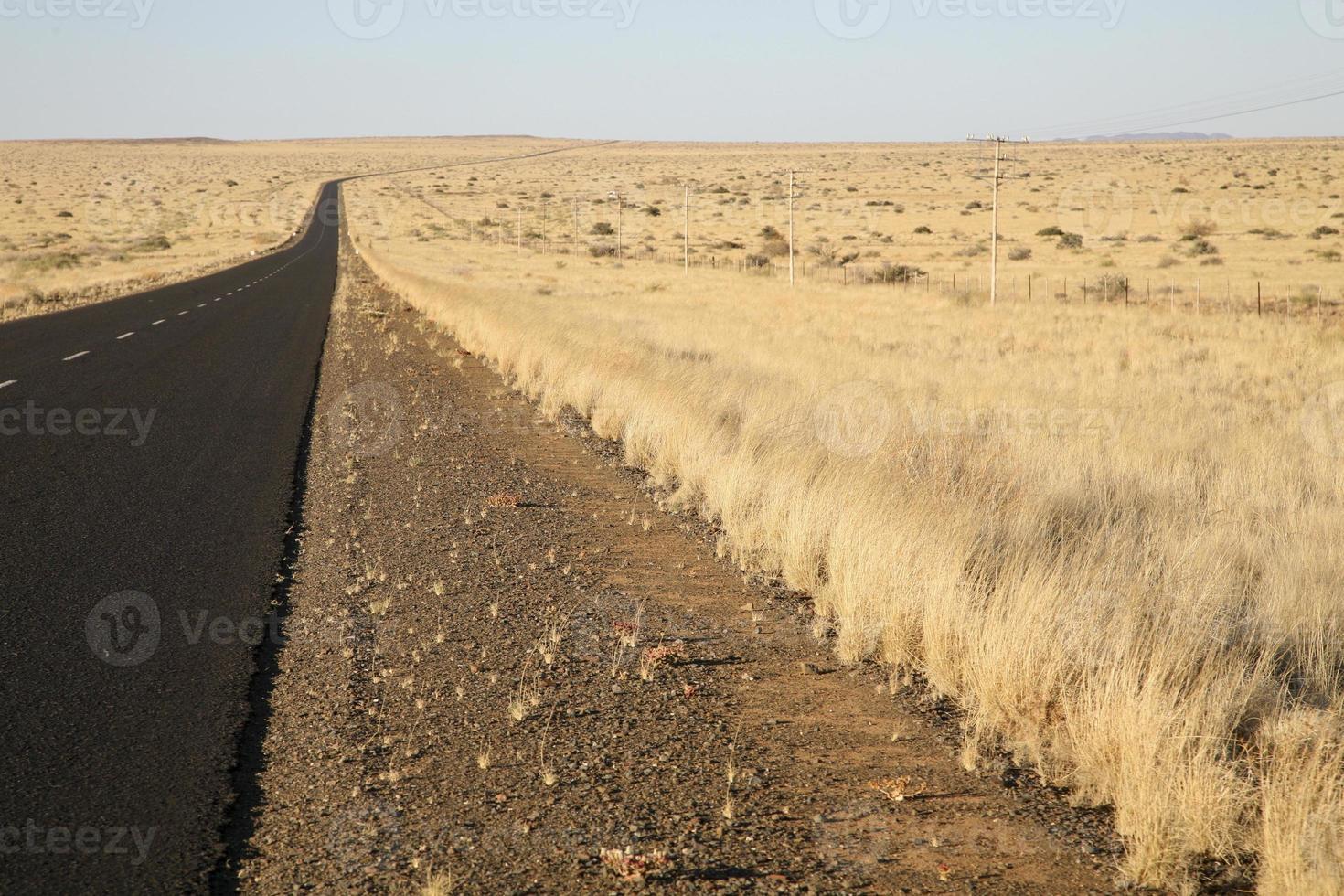 Landwirtschaft in Südafrika foto