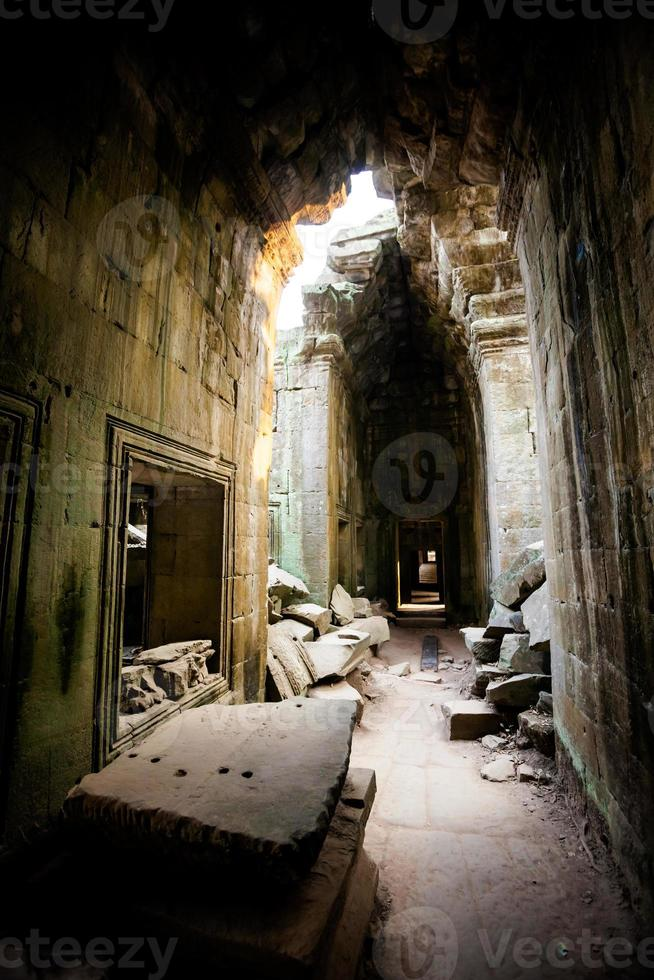 ta prohm tempel angkor wat foto