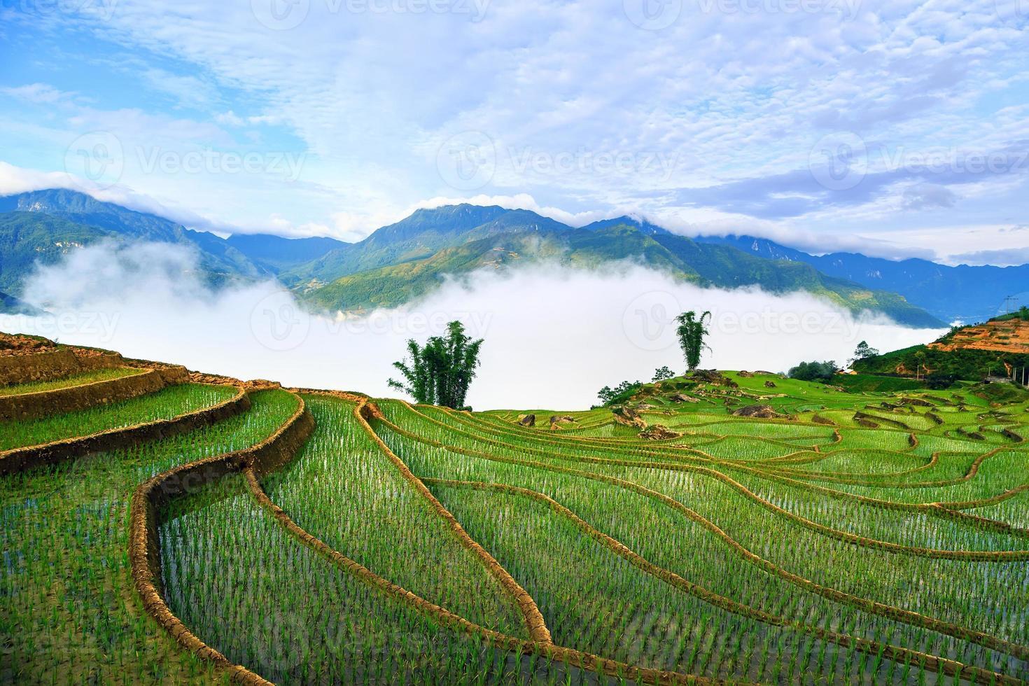 terrassierte Reisfelder in Sapa, Lao Cai, Vietnam foto