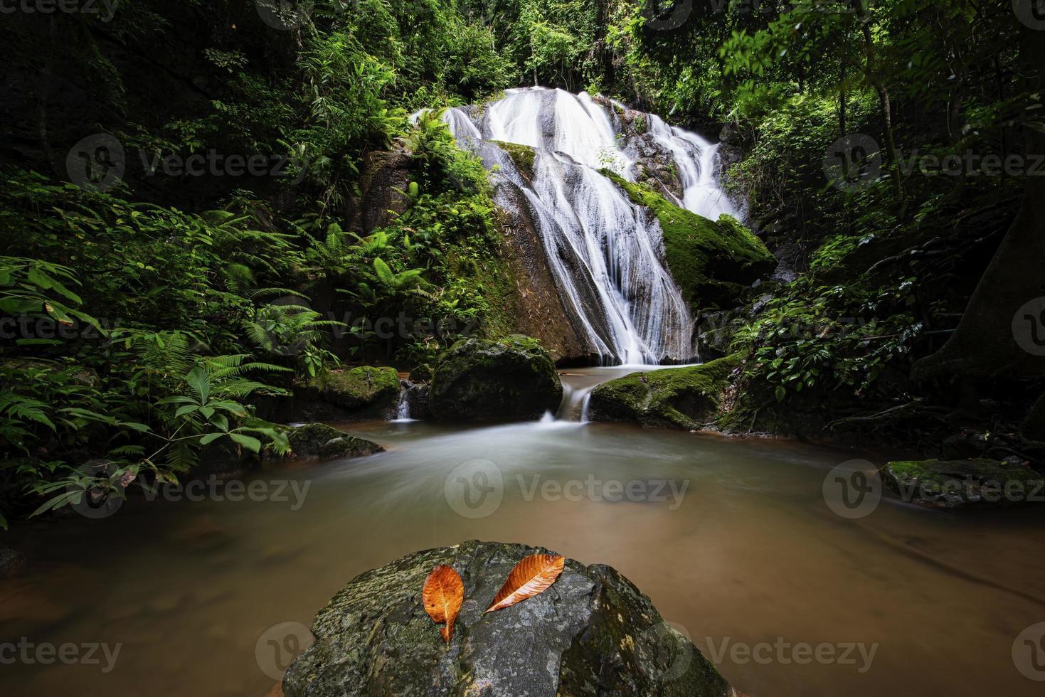 schöner Wasserfall im Wald foto