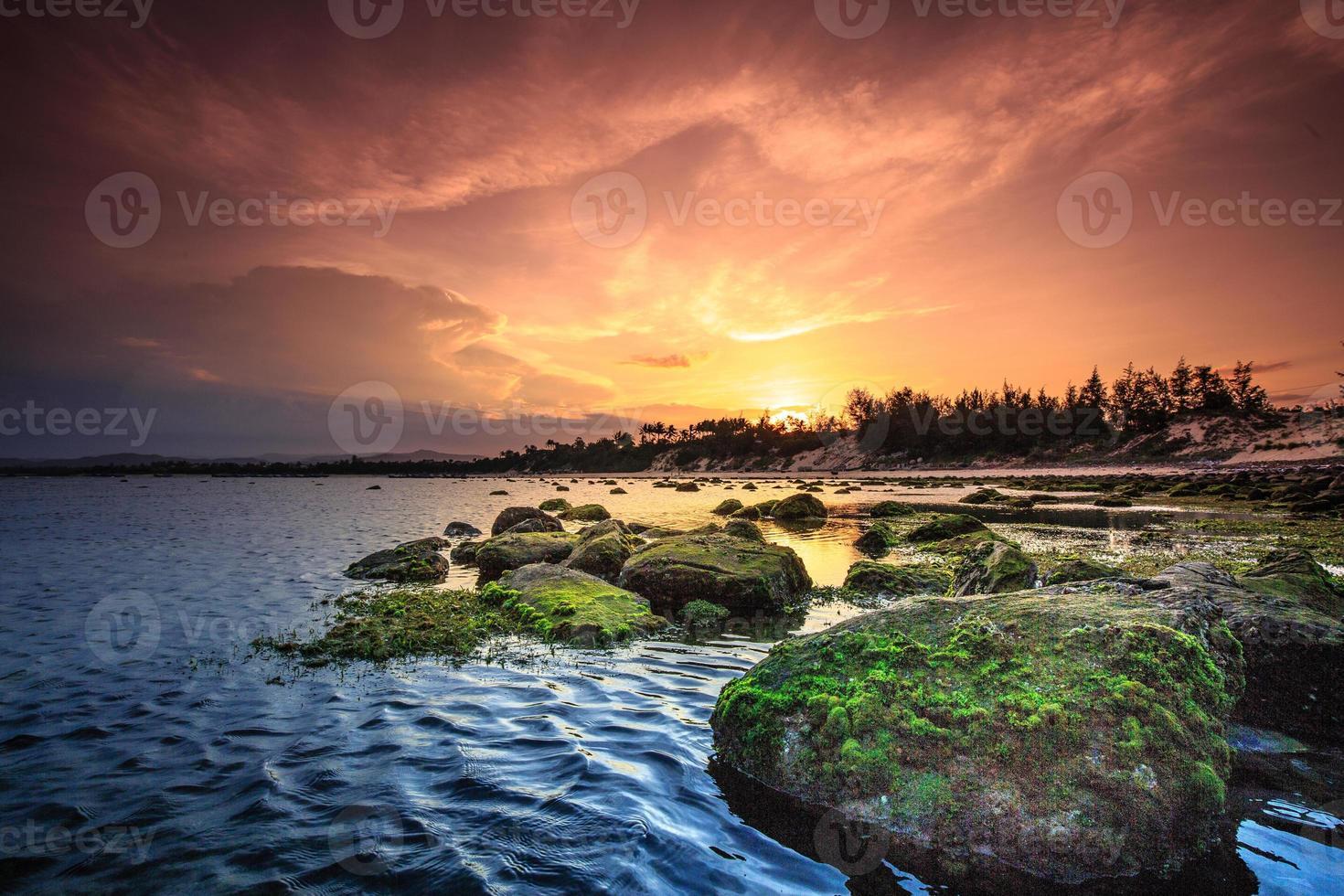Küste mit vielen Felsen und Moos in Phu Yen, Vietnam foto