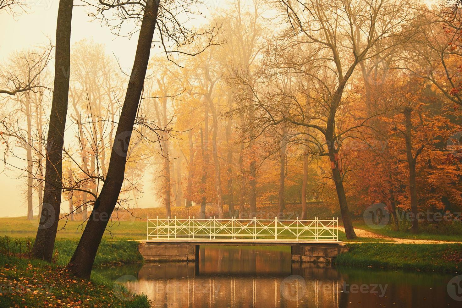 See im Herbstpark foto