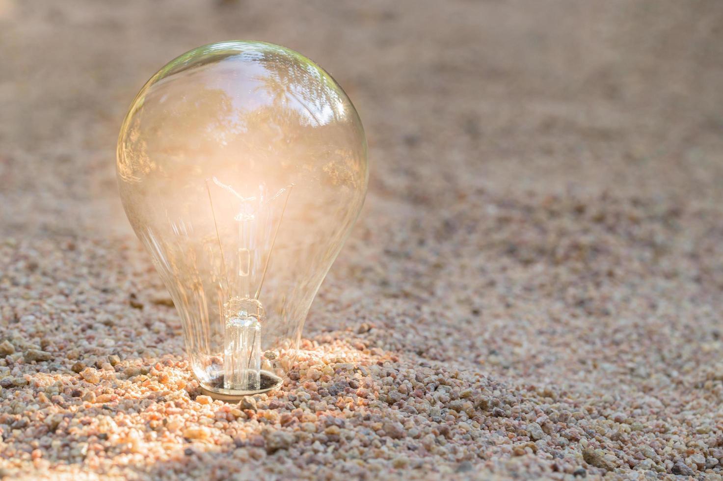natürliches Energiekonzept der Glühbirne am Strand foto