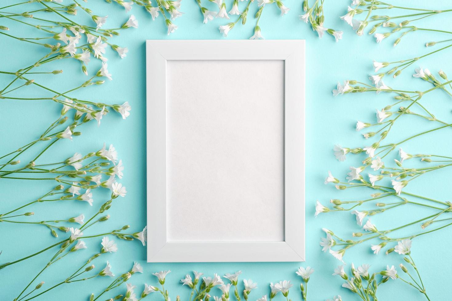 weißes leeres Fotorahmenmodell mit Mausohr-Vogelmiereblumen auf blauem Hintergrund foto