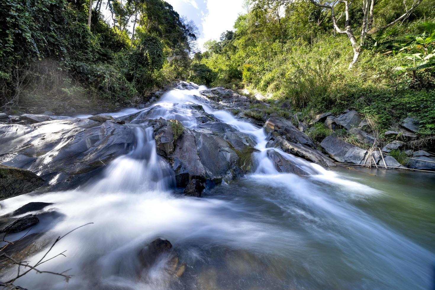 Zeitraffer Fluss und Wald foto