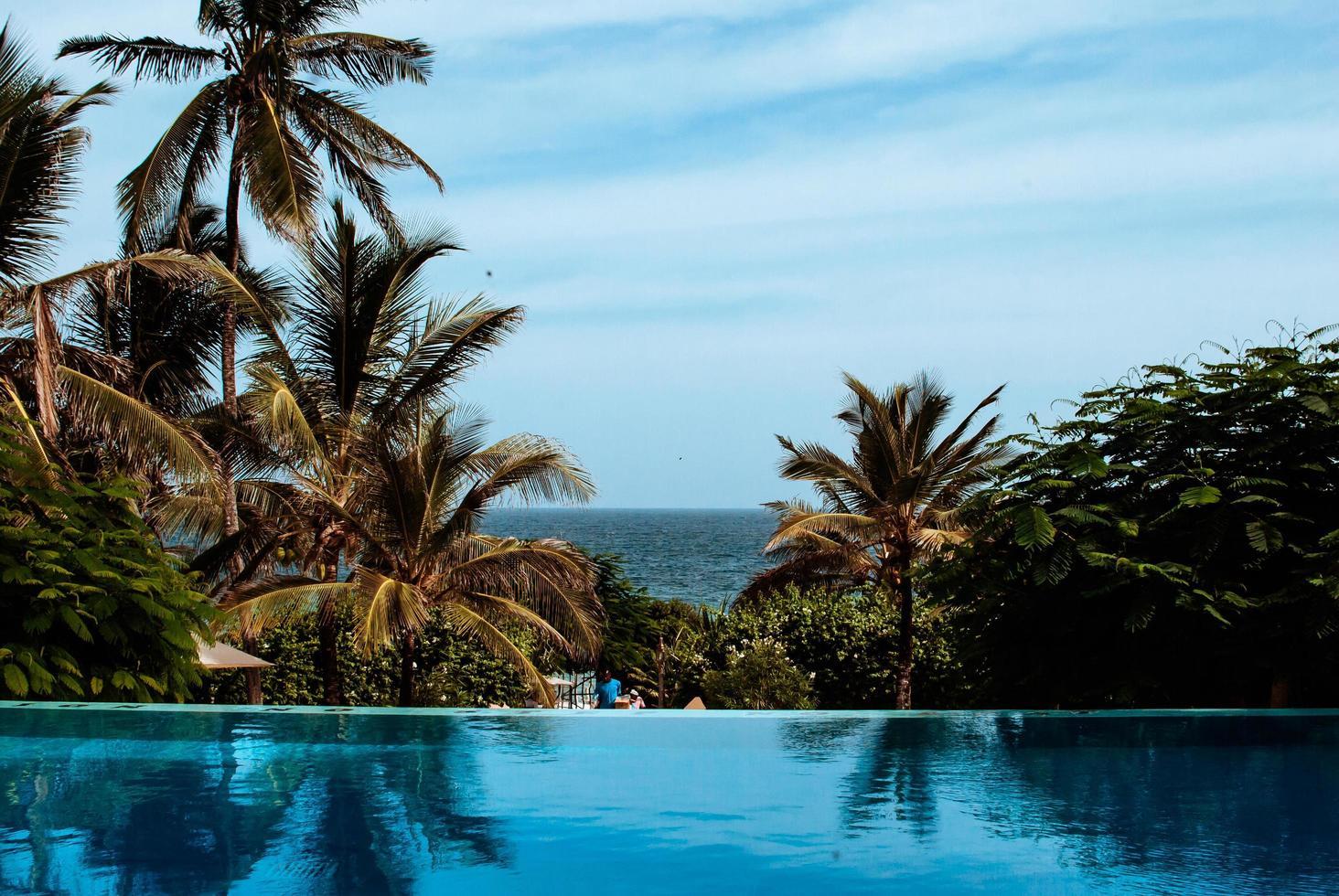 Resort Schwimmbad und Palmen foto