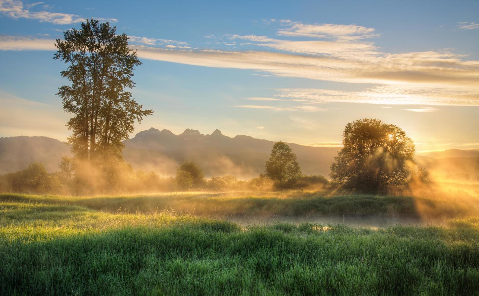 Jerry Sulina Park zur goldenen Stunde foto