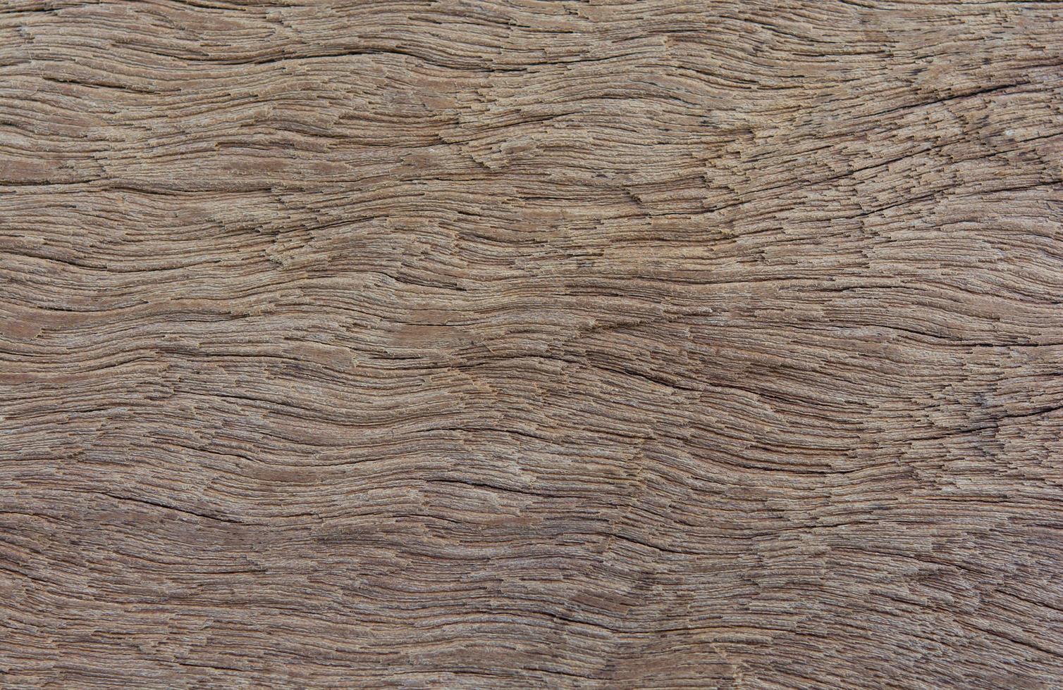 alter Plankenholzbeschaffenheitshintergrund foto