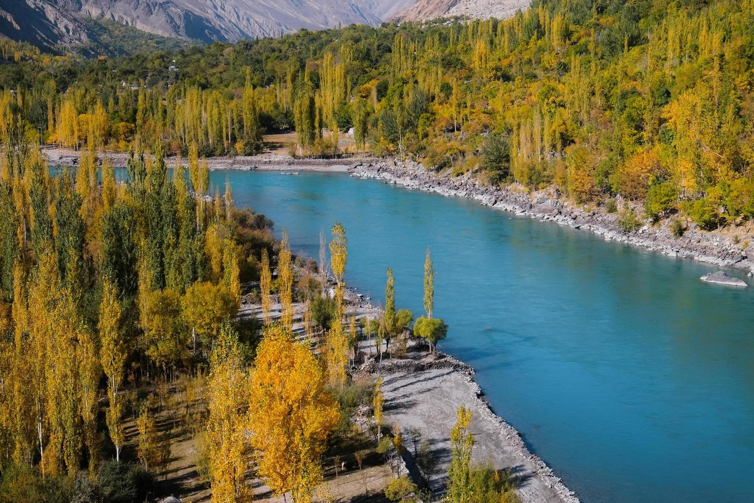 Ghizer River fließt im Herbst durch den Wald foto
