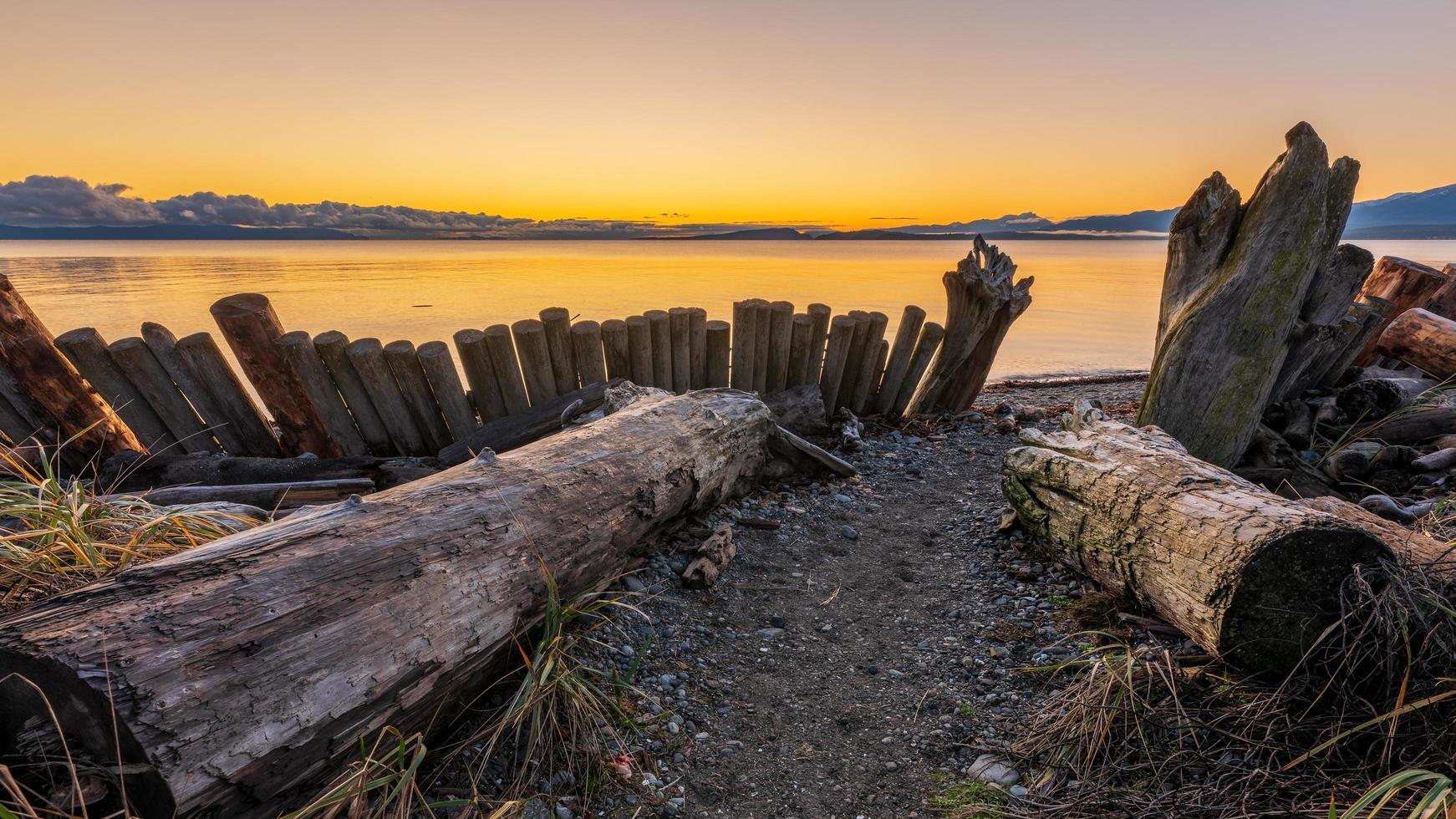 braune Holzscheite am Sandstrand foto