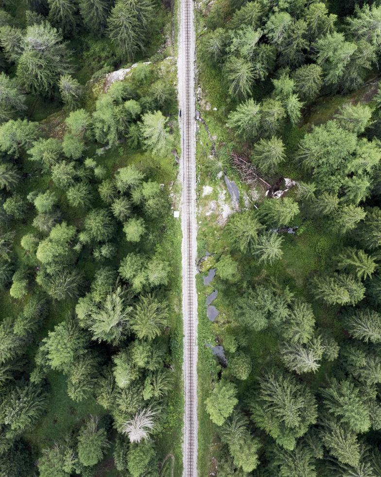Luftaufnahme der Eisenbahn im Wald foto