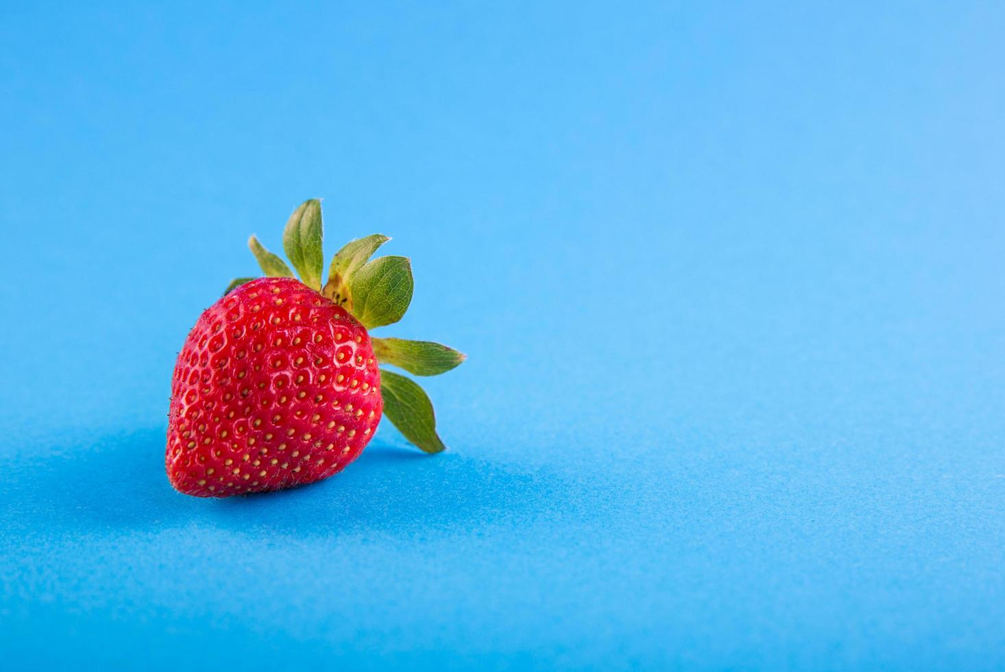 Erdbeere auf blauem Hintergrund foto
