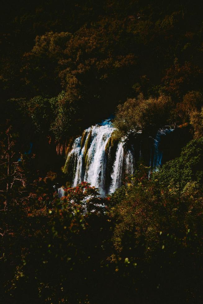 einsamer Wasserfall im Wald foto