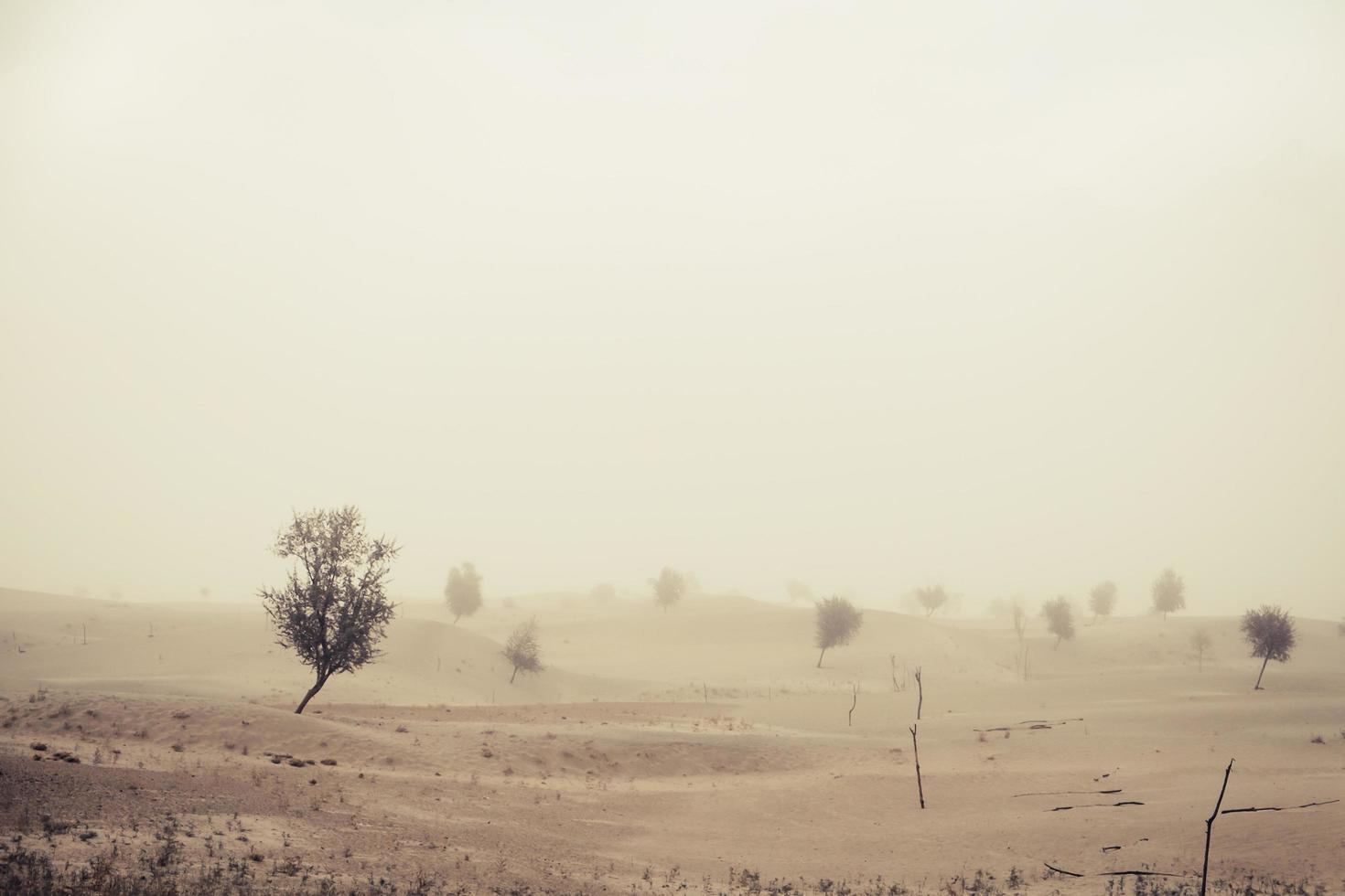 Wind vor Sandsturm in der Wüste foto
